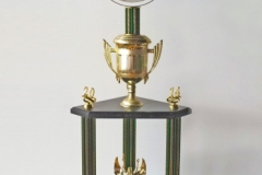 Dr. Lisa's Ego Championship 2014 (They Know You at the Gym), personalized mirror trophies