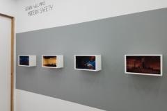 01- Senon Williams installation view